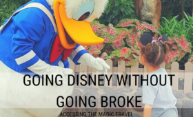 going to Disney without going broke, going Disney on the cheap, ways to save on Disney, Disney Vacation planning